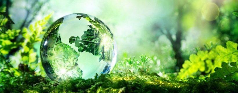 Por la salud del planeta